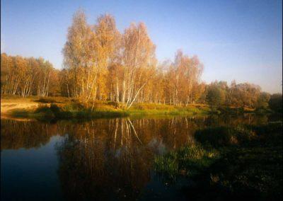 Golden-autumn-lake-in-Malahovka