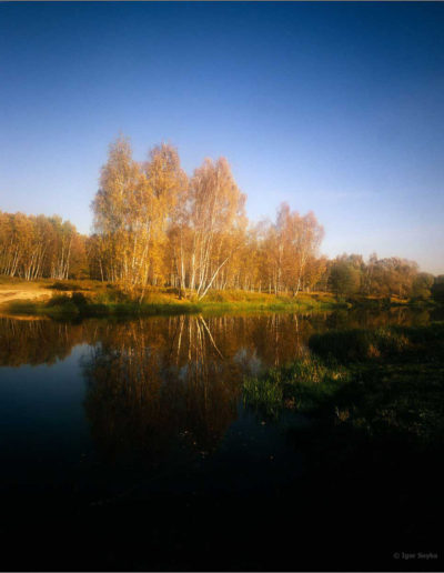 с белой рамкой 2 px -lake-in-Malahovka